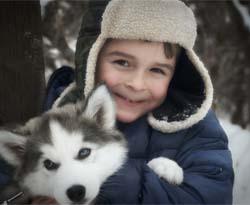 L'engouement pour les chiens dans les colos