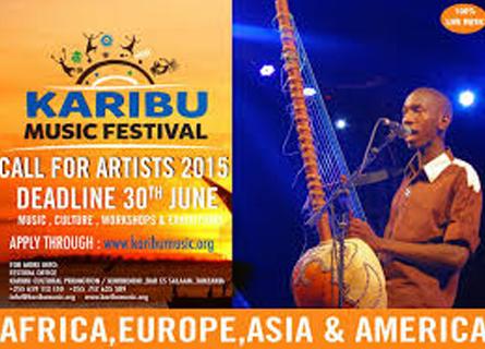 Vacances en Tanzanie - Karibu Music Festival